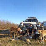 ოზურგეთის მონადირეთა ჯგუფმა გასულ წელს 10 მგელი მოკლა