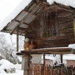 თოვლიანი აცანა დღეს- ფოტოამბავი
