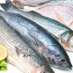 რომელ ვიტამინებსა და მინერალებს შეიცავს თევზის სახეობები
