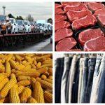 ავტომობილები, ხორცი, სიმინდი, ტანსაცმელი - ტოპ-10 პროდუქტი, რასაც ვყიდით და ვყიდულობთ აფრიკაში