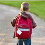 მოსწავლე, რომელიც 45 დღე სკოლას გააცდენს, სტატუსი შეუჩერდება